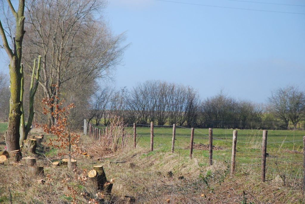 Boerennaturen: Groene warmte uit landschapsbeheer