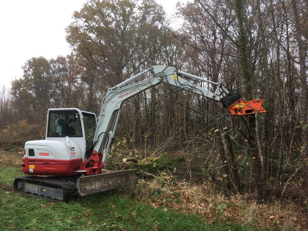 Breed partnership investeert in het beheer van knotbomen en houtkanten in Zemst