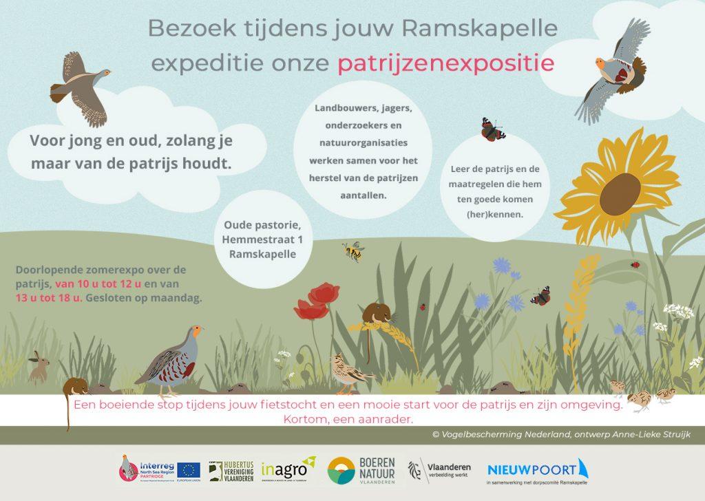 Duik in de wereld van de patrijs op de Vlaamse velden